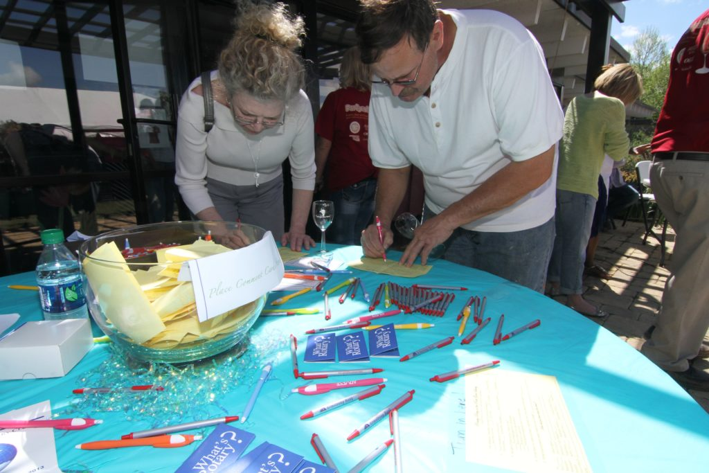Party in the Park 2015 150